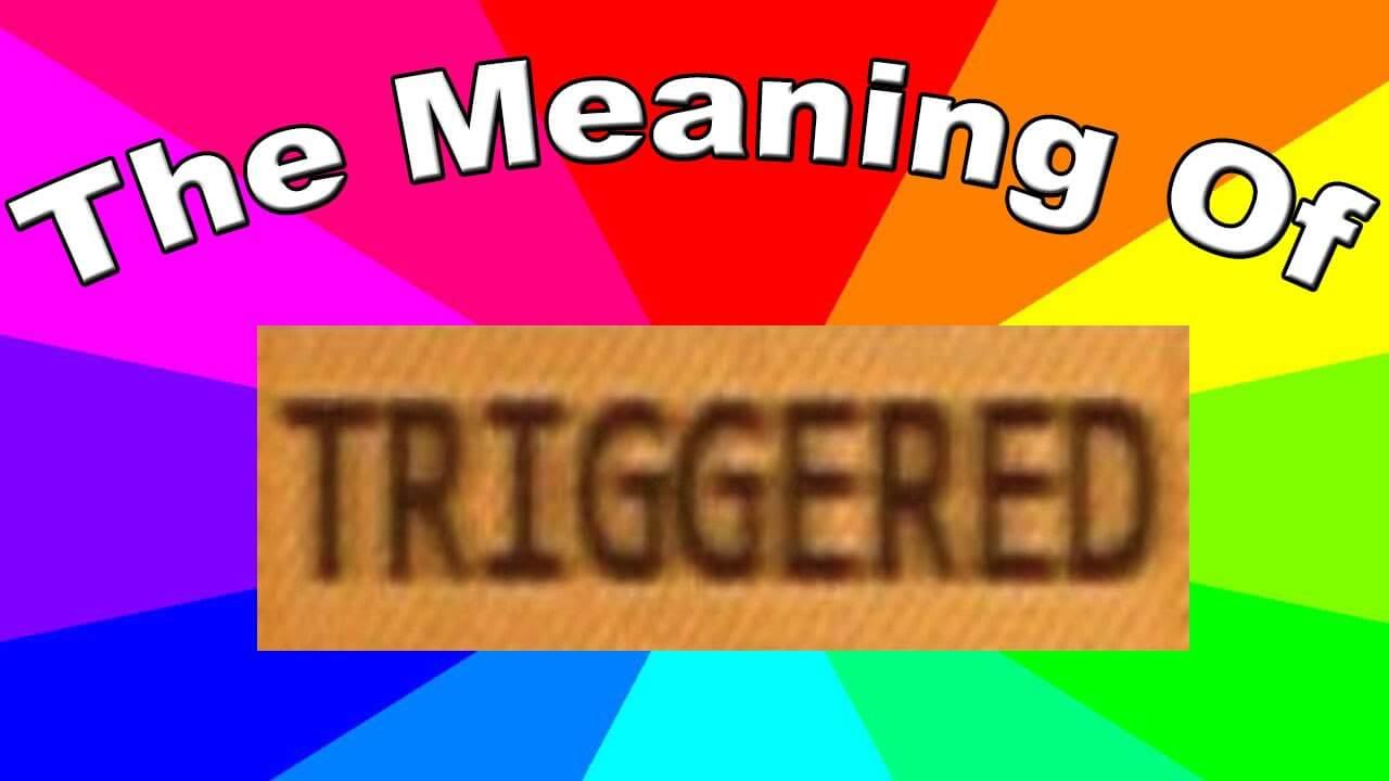 Triggered là gì? Ý nghĩa của Triggered và Meme là gì?