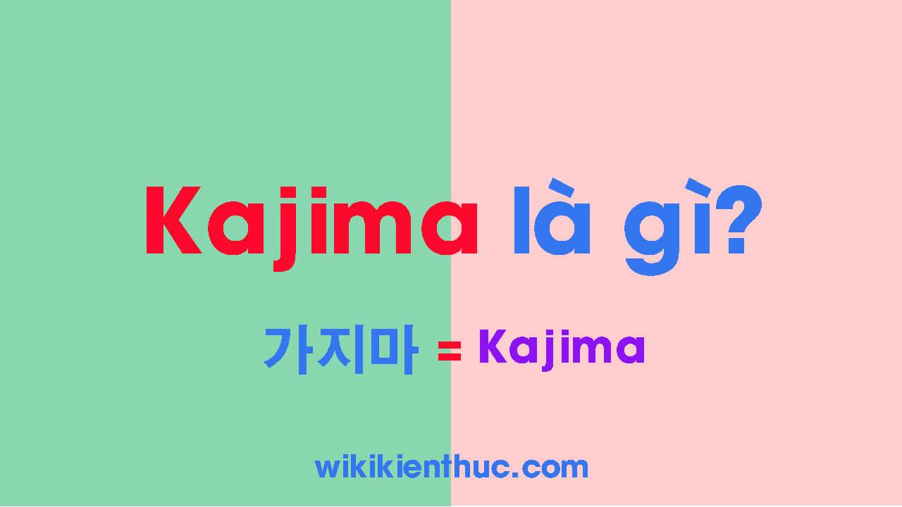 Kajima là gì? Tại sao Kajima hay xuất hiện trong các bài hát