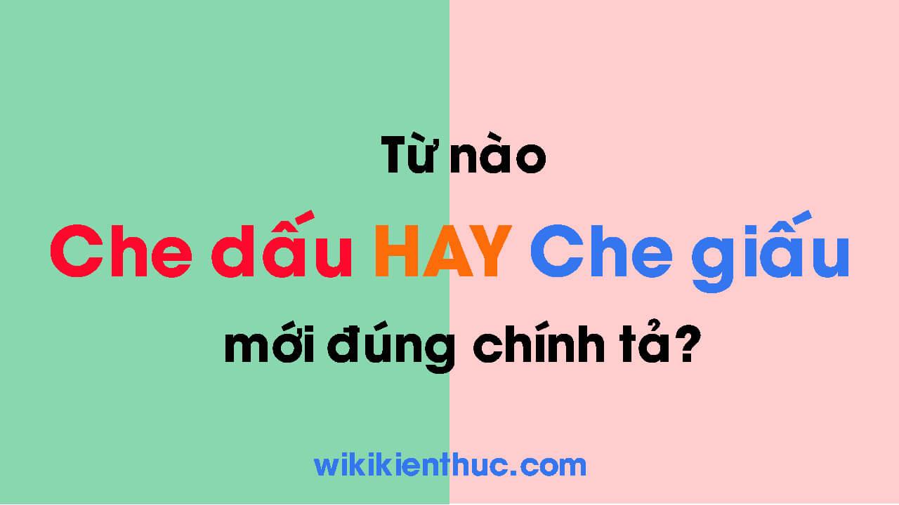 Che dấu hay che giấu mới đúng chính tả và ngữ pháp Tiếng Việt