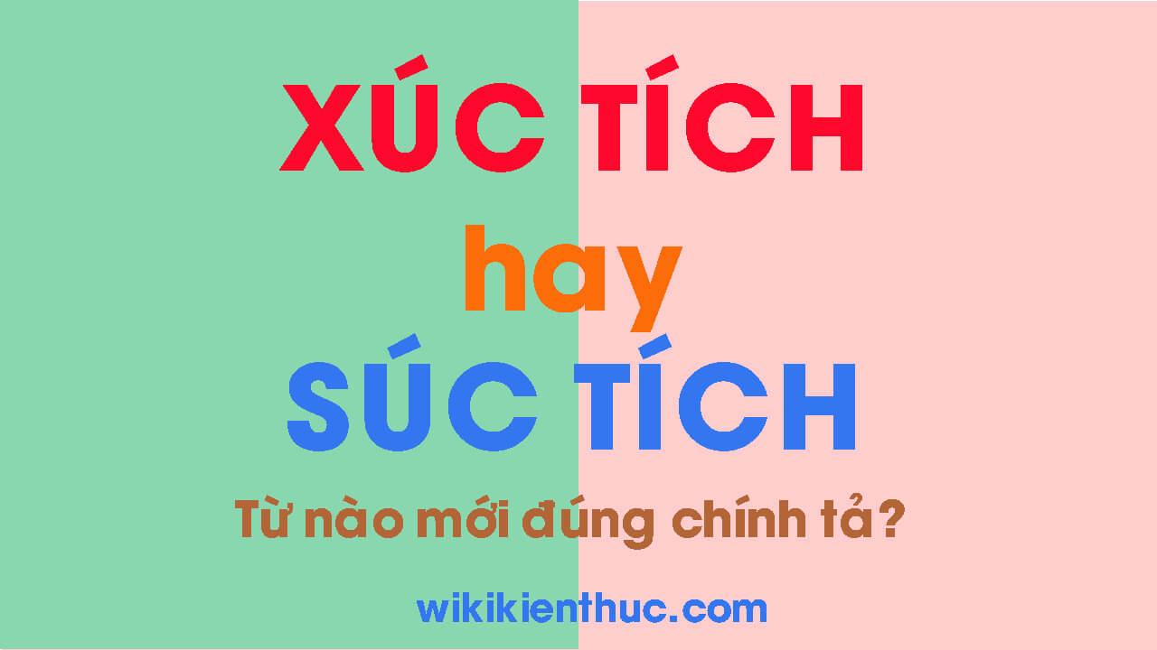 XÚC TÍCH hay SÚC TÍCH? Từ nào mới đúng chính tả Tiếng Việt